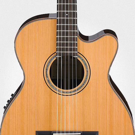 Guitarra Acústica y Electroacústica